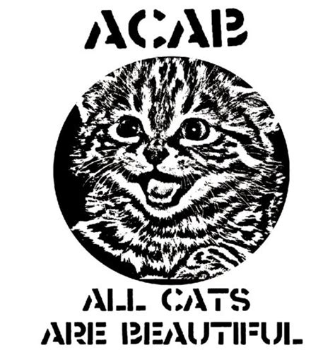 Pinterest Everything acab all cats are beautiful legally geeky