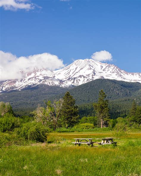 table mt shasta mount shasta picnic photograph by trax