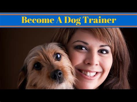 dog trainer uk dog jobs youtube