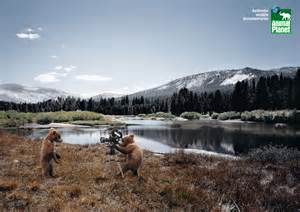 animal planter animal planet galleries dog breeds picture