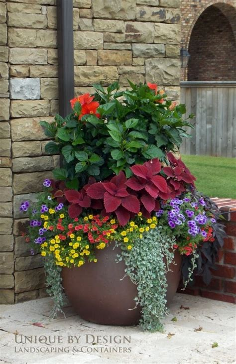 patio flower pots 8 stunning container gardening ideas home and garden