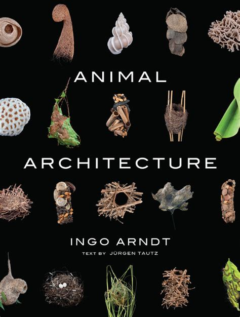 animal architecture an awesome new photo book about the structures critters create boing boing