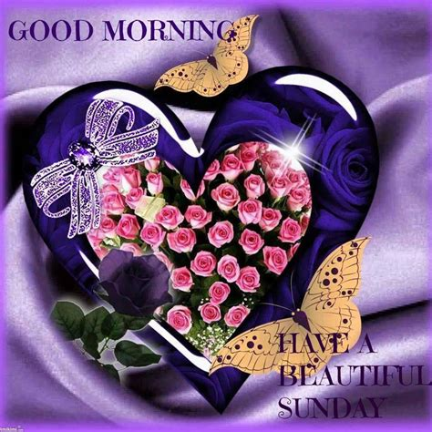 sunday good morning beautiful good morning wishes on sunday pictures images