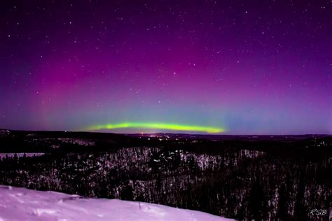 Northern Lights Forcast by Manypics Pictures Hosta Borealis