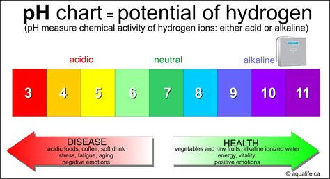ph chart juice ph levels chart pictures to pin on pinsdaddy