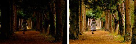 como aclarar imagenes oscuras en photoshop videotutorial c 243 mo aclarar una foto oscura con photoshop