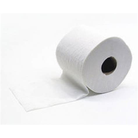 Save Tissue safe toilet tissue 2ply x 400 sheets 100 recycled pack