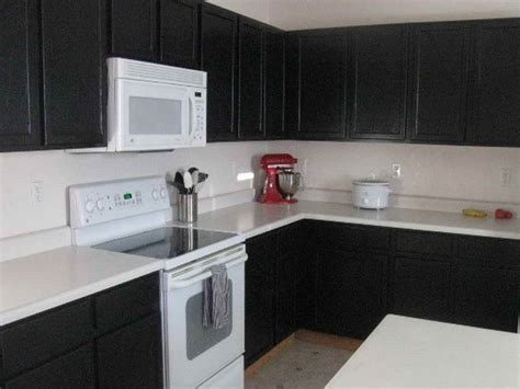 Black Kitchen Cabinet Paint Painting Kitchen Cabinets Black