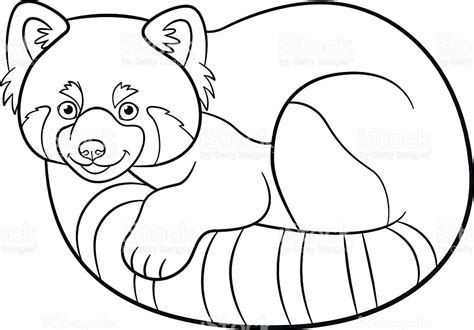 red panda coloring page coloring pages little cute red panda stock vector art