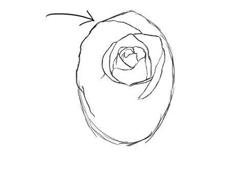 realistic rose coloring page realistic flower az coloring pages