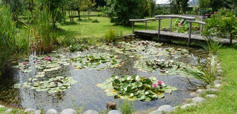 fontane ornamentali da giardino realizzazione laghetti ornamentali