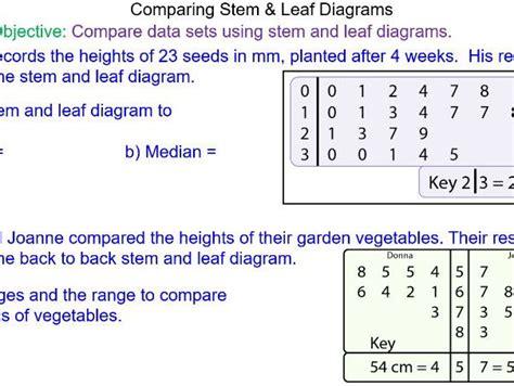 stem and leaf diagram gcse stem and leaf diagram worksheet ks3 theleaf co
