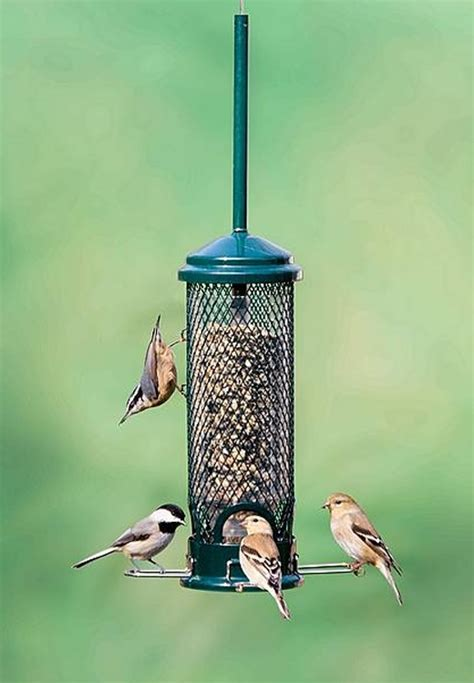 brome squirrel buster mini 1055 squirrel proof bird feeder