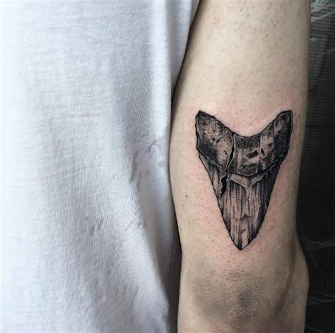 shark tooth tattoo 17 best ideas about shark tooth on