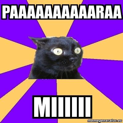 Anxiety Cat Meme Generator - meme anxiety cat paaaaaaaaaaraa miiiiii 25721603