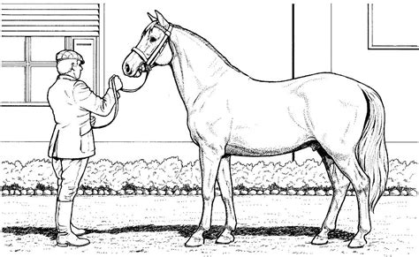realistic horse coloring pages pictures to pin on
