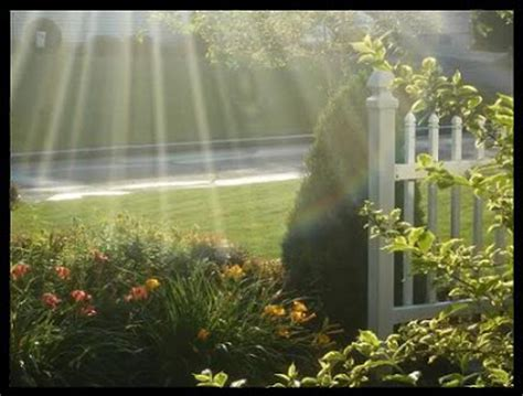 God Looked Around His Garden by Sai Inspirations God S Garden