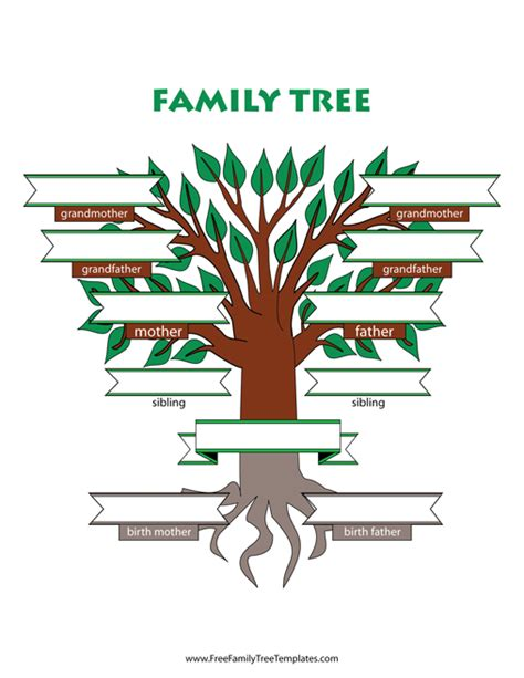 family tree templates with siblings adoptive family tree with siblings template free family