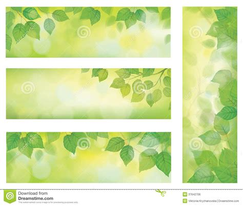 banner design for nature vector nature banners branch of birch tree with g royalty