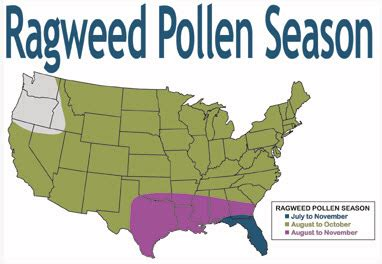 Allergy Map Usa by Allergy Maps And Everything Else About Allergies From The