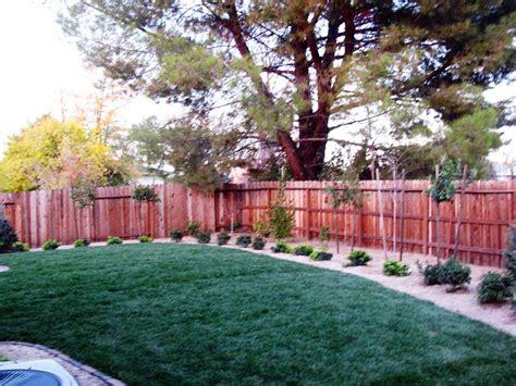 renovate backyard backyard renovation sacramento after house trend design