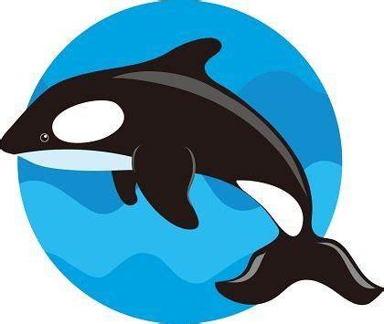 ballenas animadas cute whale cliparts clipart me