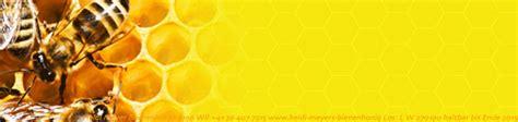 Beschriftung Honigglas by Erfreut Honig Etiketten Vorlage Bilder Entry Level