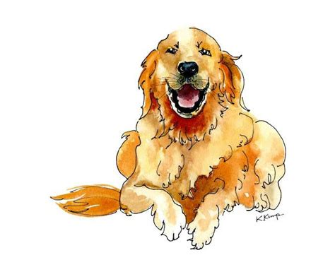 golden retriever watercolor 17 ideas about pet portraits on paintings and watercolor