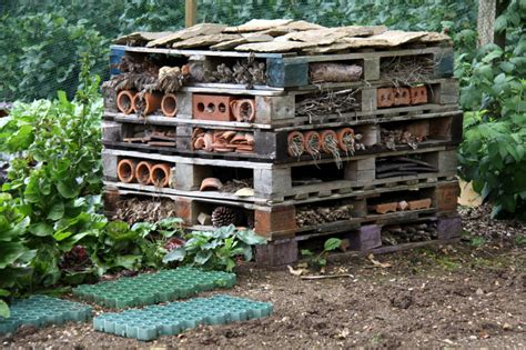 bed bugs hotel diy bug hotels practical garden art install it direct