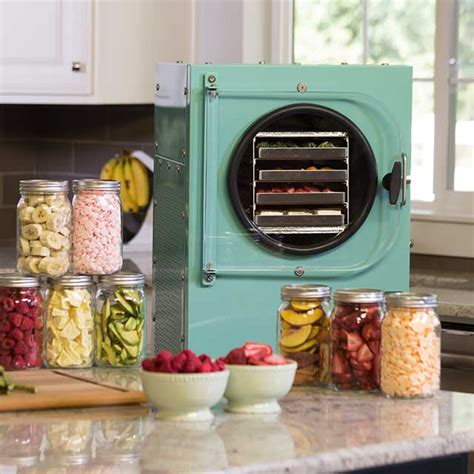 are home freeze dryers the future of healthy food
