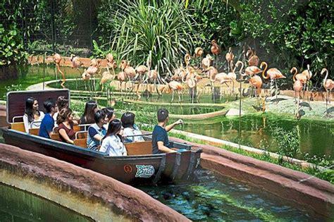 amazon in singapore singapore tourism board adds river safari to its portfolio