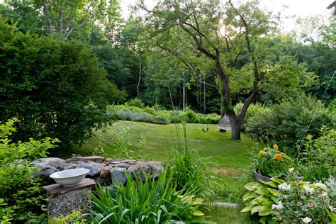 houzz landscaping backyard houzz backyard landscape traditional with chairs bluestone