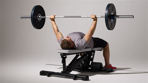bench press benchmark how to master the bench press coach exercise guides
