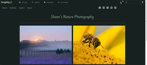 What To Do With The Photographs You Ve Created 3 Ideas To Get You Started Smugmug Website Templates