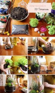 diy terrarium pictures photos and images for facebook pinterest and twitter