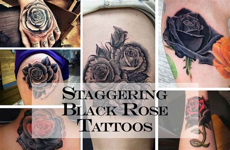 black rose meaning tattoo 15 black meanings and designs inkdoneright