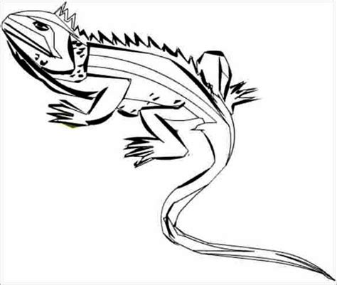 iguana  art coloring page  kids  print