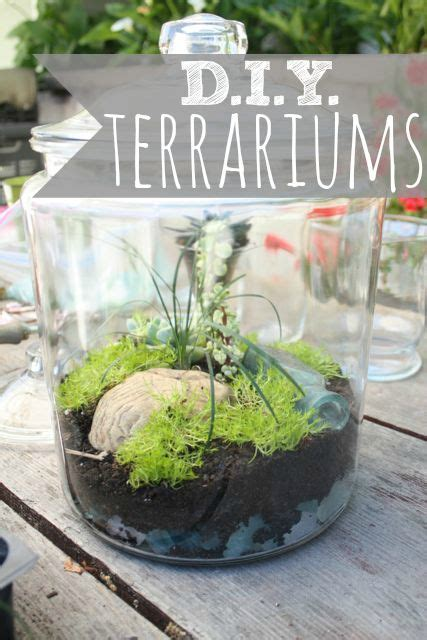 coffee table terrarium terrarium pinterest ps coffee and tables pinterest the world s catalog of ideas