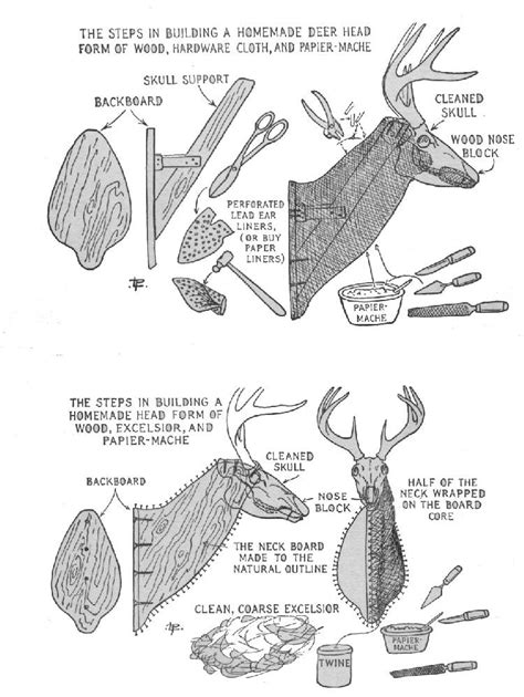 17 paper mache deer diy guide patterns