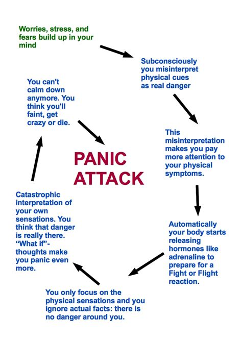 beyond my diagnosis steps to overcoming a sudden illness books panic attacks and panic disorder explained
