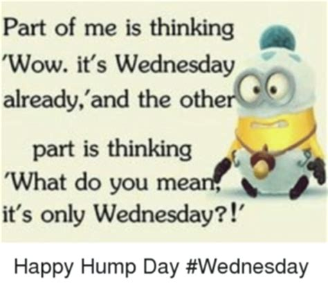 Wednesday Hump Day Meme - kickass funny wednesday meme