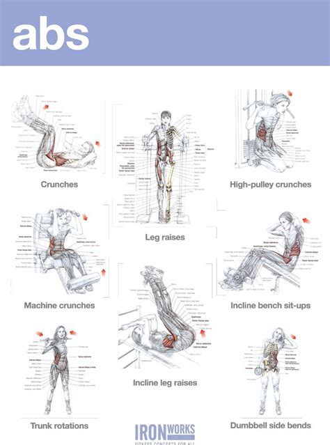 abs and shoulders workout exles workout workout shoulder and