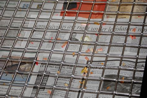 newspaper bedding the best liner to use in your parrot s cage