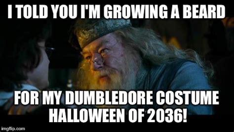 Dumbledore Memes - harry potter joke dark brown hairs