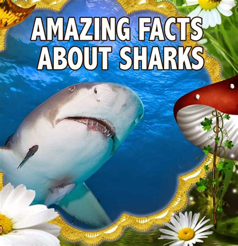 amazing picture books childrens book amazing facts about sharks great