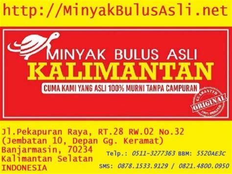 Minyak Bulus Pembesar Payudara 0821 4800 0950 telkomsel efek minyak bulus jual minyak
