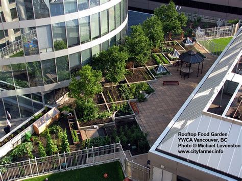 rooftop landscaping vancouver bc city farmer news