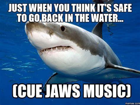 Jaws Meme - just when you think it s safe to go back in the water