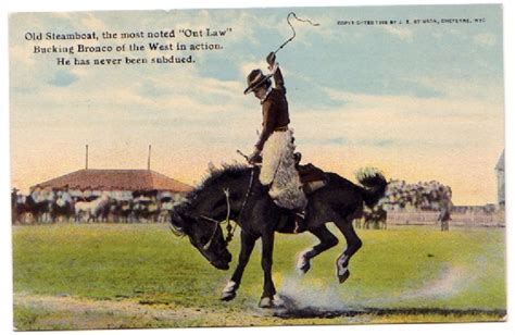 steamboat horse frontier days