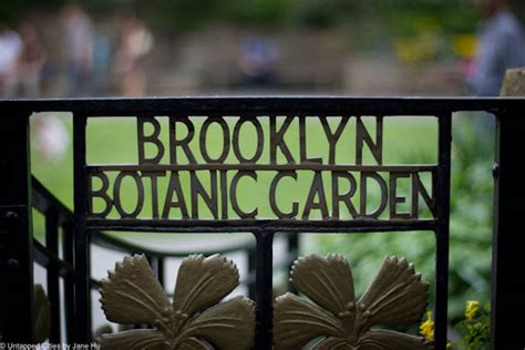 Botanical Garden Signs Catch The Cherry Blossoms At Botanic Garden Untapped Cities